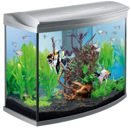 Tetra AquaArt Evolution Line 130 литров, - современный аквариум инновационного дизайна для опытных и начинающих аквариумистов объемом на 130 литров.